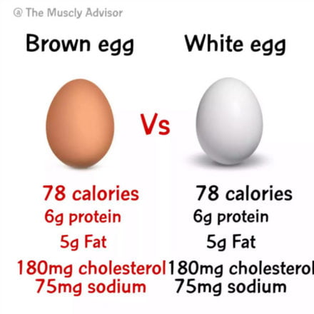 Egg Nutritional facts
