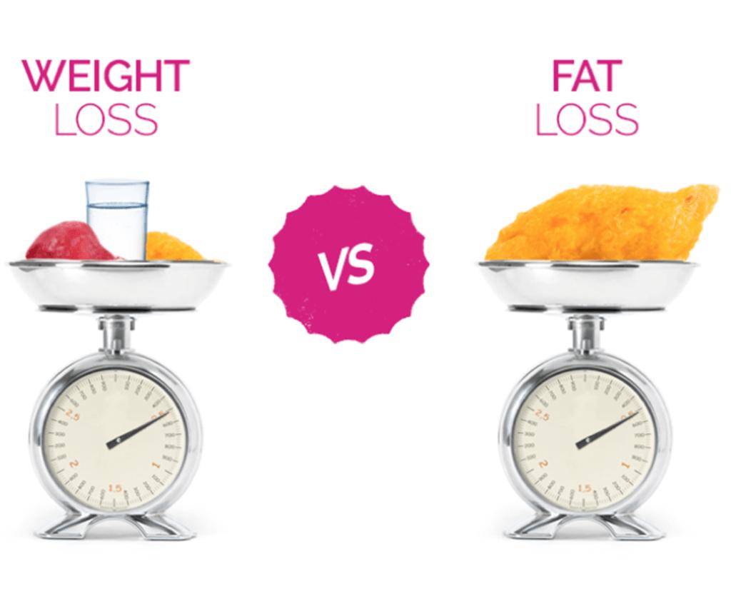 Fat loss and Muscle loss