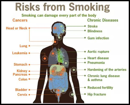 Effects Of Smoking On Health And Fitness